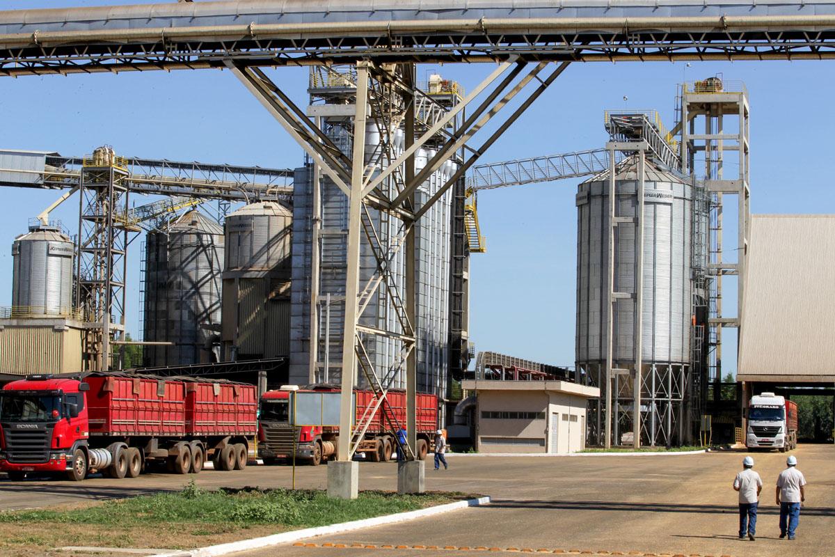 Cargill, beneficiamento de soja