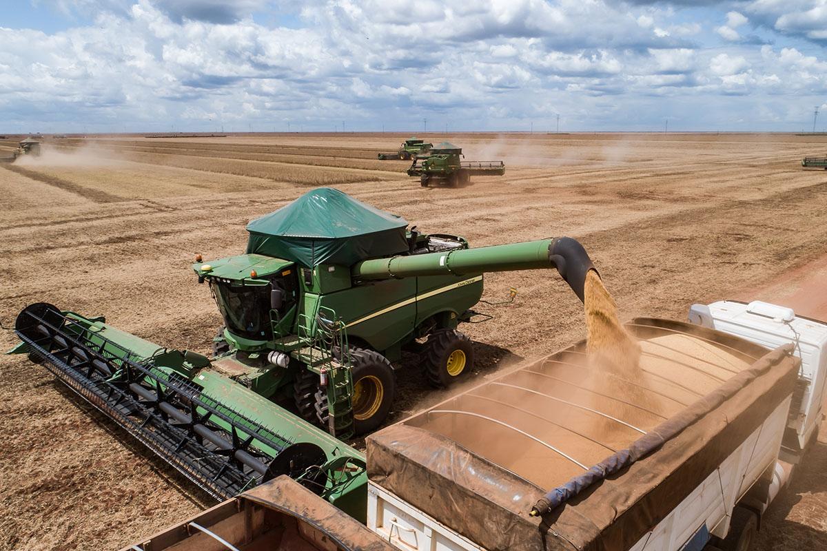 Colheita de grãos da Amaggi Agro